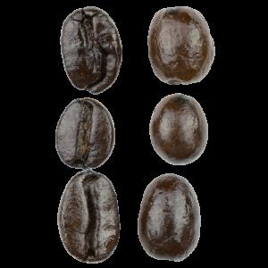 espresso 6 bean blend