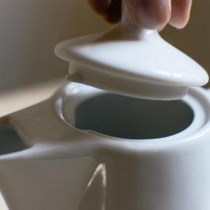mellita-6-cup16
